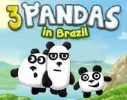 ブラジルの3頭のパンダ