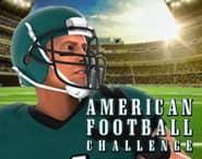 アメリカンフットボール・チャレンジ