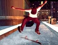 スケートマニア