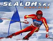 スラローム・スキーシミュレーター